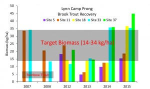 Lynn_Camp_Prong_Update_8July2015